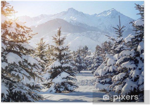 Poster Paesaggio di montagna inverno - Temi