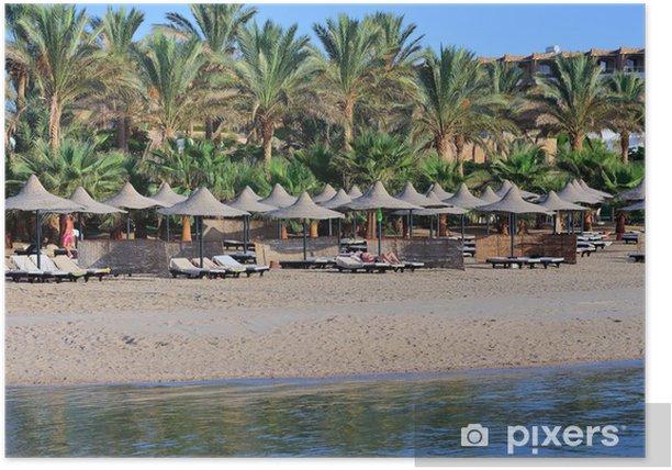 Poster Palm und Strand - Afrika
