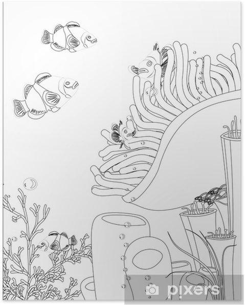 Poster Pesce Pagliaccio Con I Coralli Libro Da Colorare Pixers