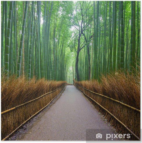 Poster Pfad Zum Bambuswald Arashiyama Kyoto Japan Pixers Wir