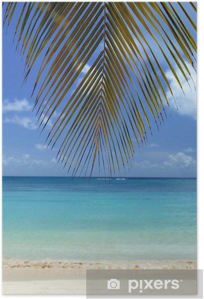 Poster Reihe von Kochsalzlösung (Martinique) - Inseln
