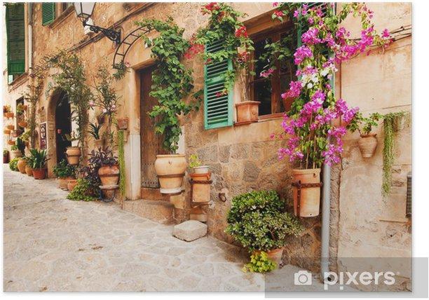Poster Romantische Gasse mit Blumen und Grün - Bereich