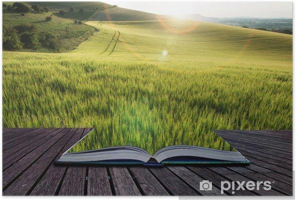 Poster Schöne Landschaft Weizenfeld im hellen Sommer Sonnenlicht evenin - Sonstige Gefühle