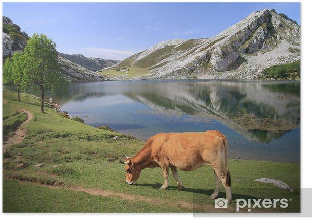 Poster See Enol Covadonga - Picos de Europa - Spanier - Europa
