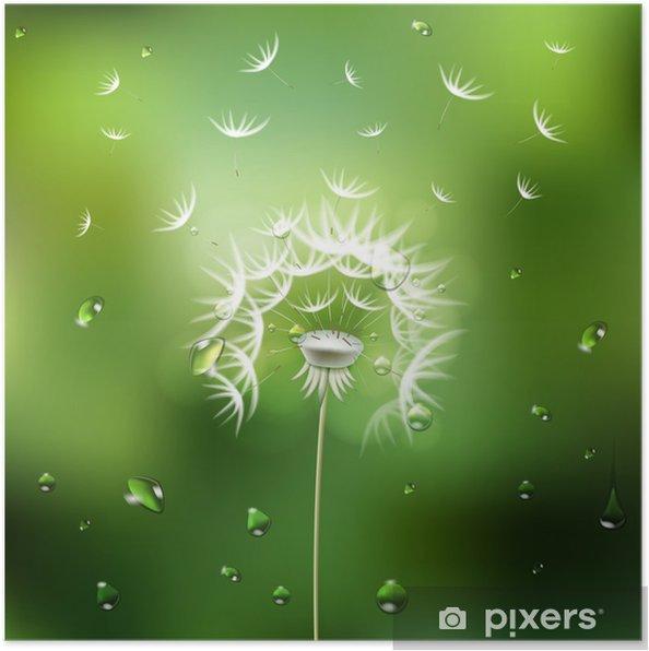 Poster Sfondo Verde Con Fiore Di Tarassaco Pixers Viviamo Per