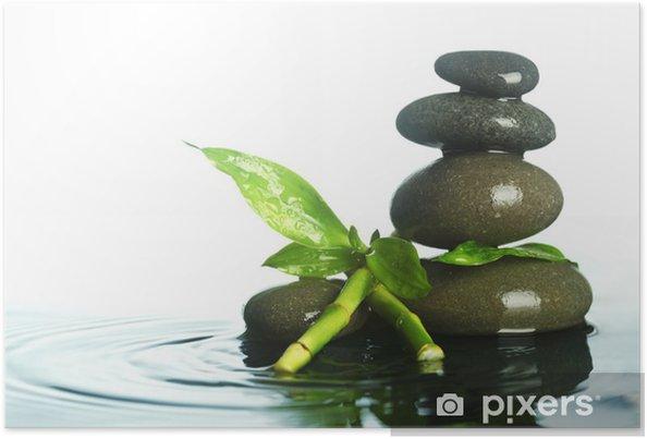 Poster Steine im Wasser - Pflanzen
