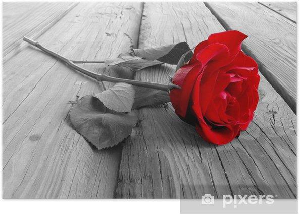 Poster Stieg auf Holz bw - Rosen