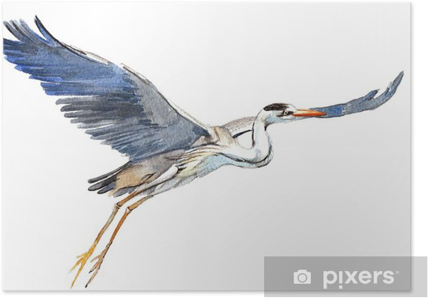 Poster Storch - Leben