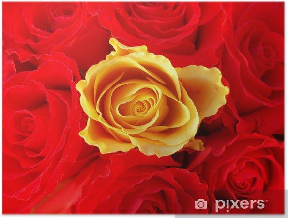 Poster Strauß roter Rosen mit einer einzigen gelben - Fröhlichkeit