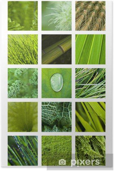 Poster Texture Materiale Sfondo Verde Natura Giardino Pianta