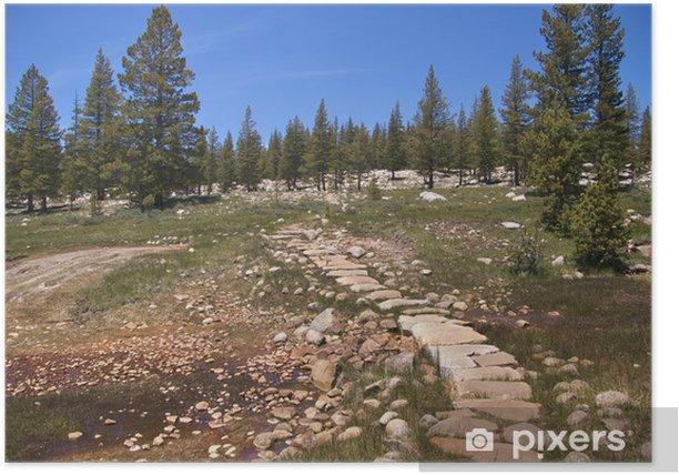 Poster Trail durch Soda Springs, Kaltwasser-Blubbern, Yosemite NP - Amerika