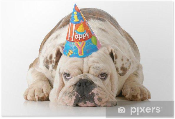 Poster Traurig Geburtstag Hund Pixers Wir Leben Um Zu Verandern