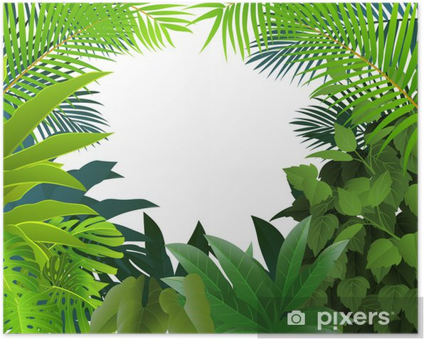 Poster Tropenwald Hintergrund - Bäume