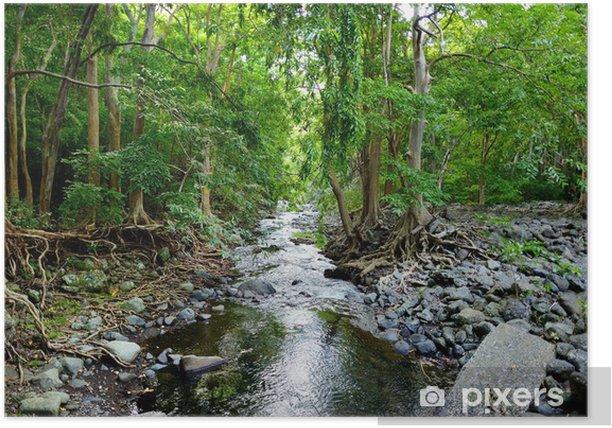 Poster Tropische Dschungel von Mauritius - Themen