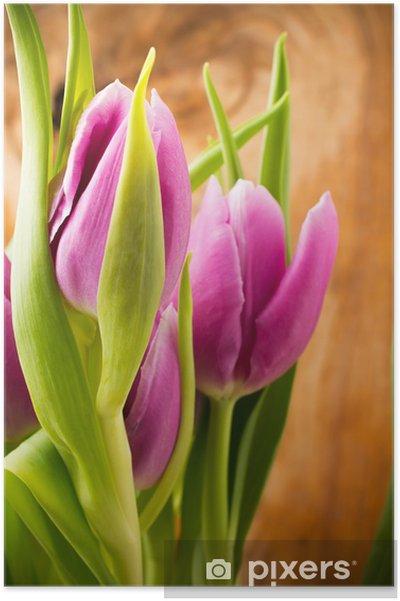 Poster Tulpen - Themen