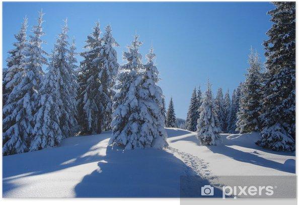 Poster Verschneiter wald - Jahreszeiten