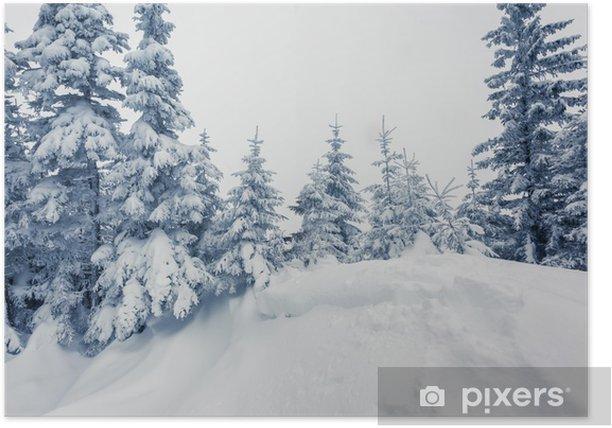Poster Winterlicher - Themen