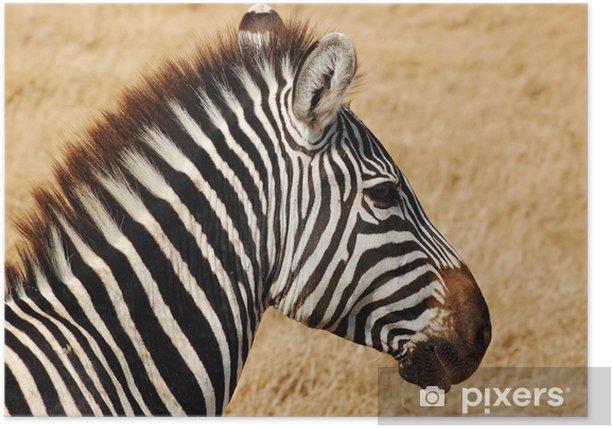 Poster Zèbre: aire de Erhaltung du Ngorongoro - Themen