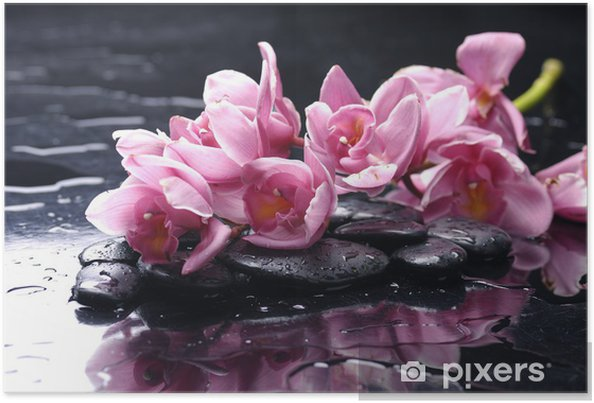 Póster beauty orchid and stone with water drops - Temas