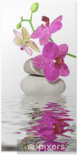 Póster Ein Zweig Orchidee - Temas