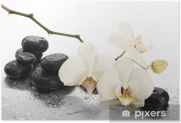 Póster Spa stones and orchid flowers, isolated on white. - Estilos