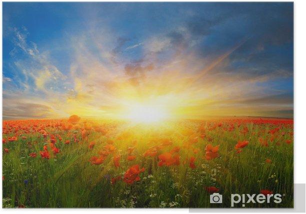 Poster Цветы на полях -