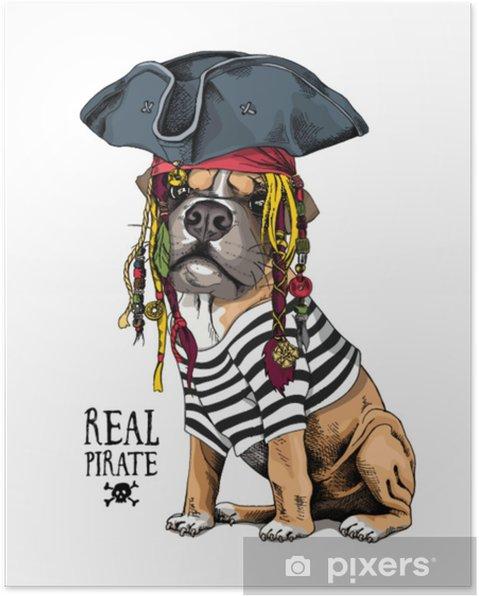 Boksör Köpek çizgili Hırka Kaptan şapkası Bandana Ve Bir