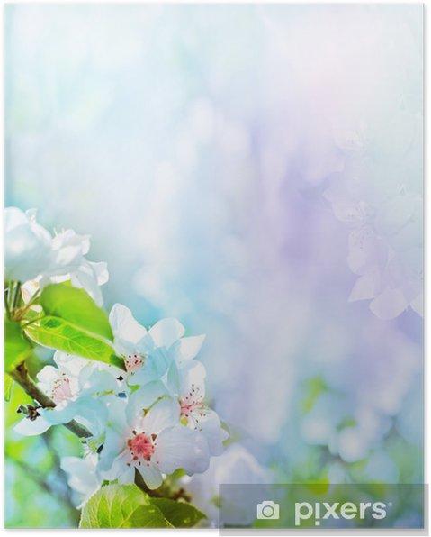 Bulanık Doğa Arka Plan Bahar çiçekleri üzerinde Elma çiçeği Poster