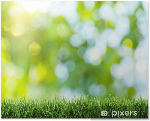 Bulanık Doğa Arka Plan Poster Pixers Haydi Dünyanızı Değiştirelim