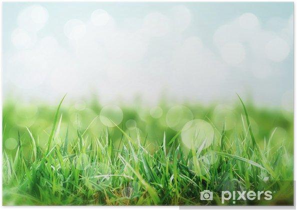 çayır çimen Ile Doğa Arka Plan Poster Pixers Haydi Dünyanızı