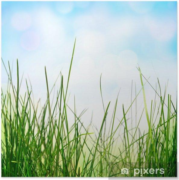 çim Ile Soyut Doğa Arka Plan Poster Pixers Haydi Dünyanızı
