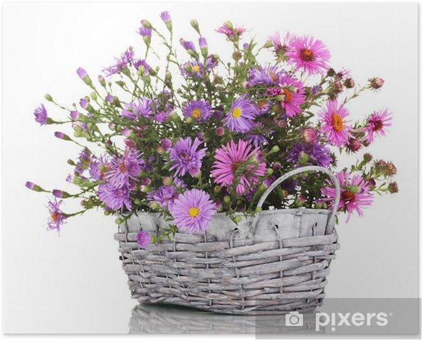 Isolated On White Sepet Mor çiçekler Güzel Buket Poster Pixers