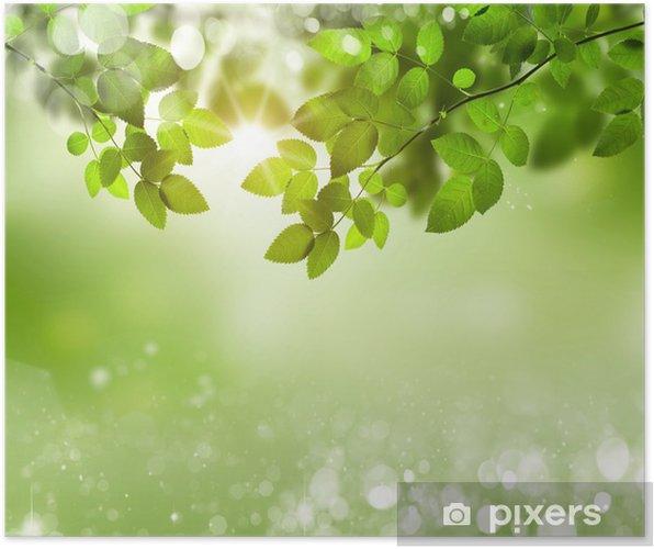 Seçici Odaklanma Ile Doğal Yeşil Arka Plan Poster Pixers Haydi