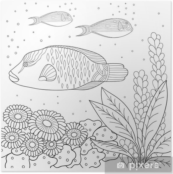 Poster Siyah Ve Beyaz Doodle Desen Boyama Kitabı Için Deniz Desen Deniz Balık Deniz Yosunu Kabarcıklar çocuklar Ve Yetişkinler Için