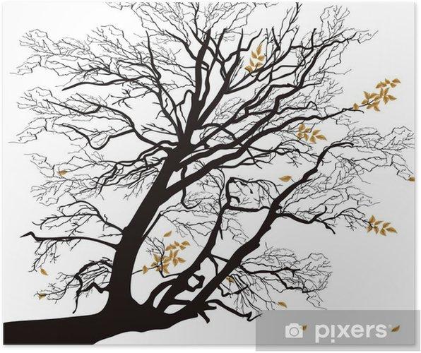 Sonbahar Ağaç Dalı Beyaz Izole Poster Pixers Haydi Dünyanızı