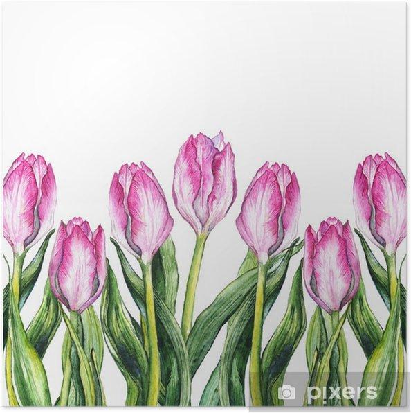 Suluboya Pembe Lale çiçeği Doğa Sınır çerçeve Poster Pixers