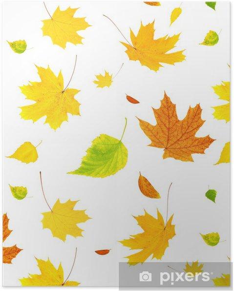 Poster Uçan sonbahar yaprakları ile arka plan - Mevsimler
