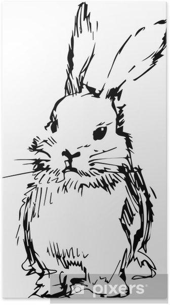 Uzun Kulakları Olan Bir Tavşan Resmi Poster Pixers Haydi