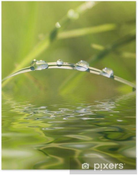 Poster Yeşil doğa - Mevsimler