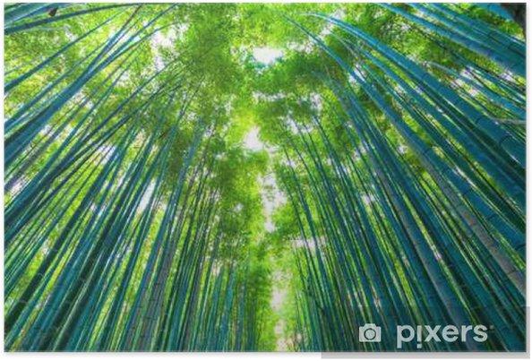 Poster 京都 嵐山 早朝 の 竹林 - Landscapes