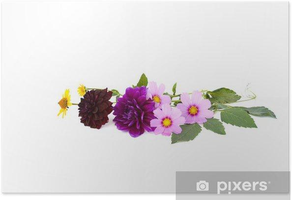 букет Poster - Flowers