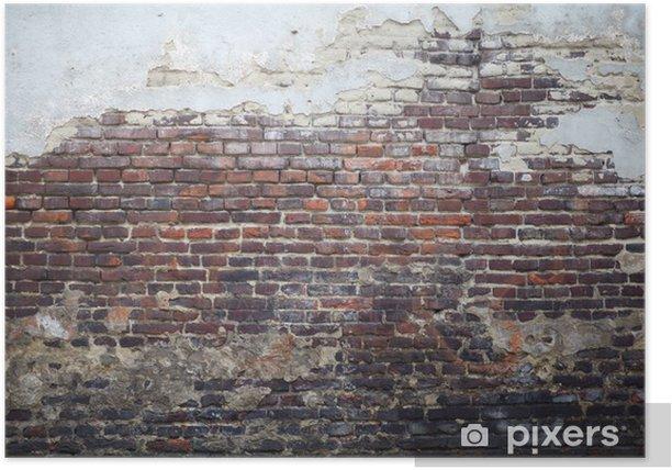 старая стена Poster - Themes