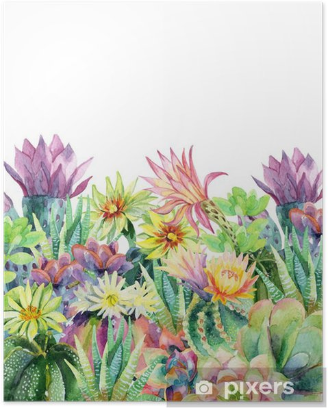 Póster Acuarela floración fondo de cactus - Plantas y flores