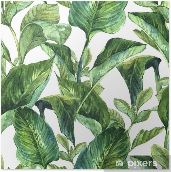 Poster Akvarell Seamless Tropiska - Växter & blommor