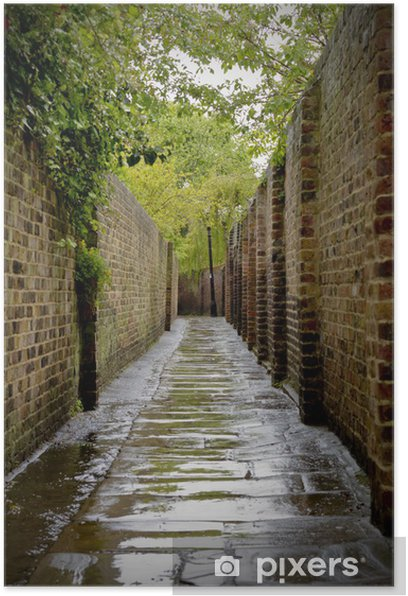 Poster Alleyway - Thèmes
