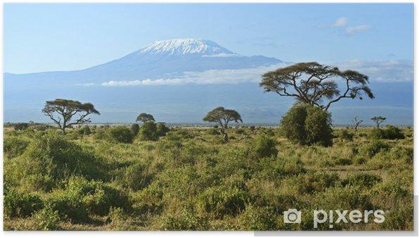 Póster Amboseli National Park - Vacaciones