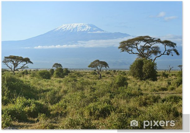 Amboseli National Park Poster - Holidays