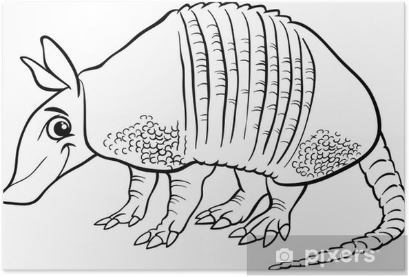 Póster Animales Armadillo Página Para Colorear De Dibujos Animados