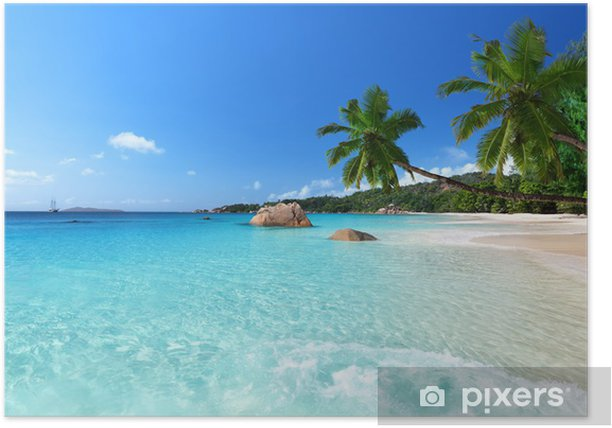 Anse Lazio beach at Praslin island, Seychelles Poster - Palm trees