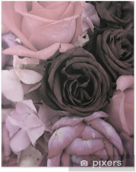Antique bouquet of pink roses and peonies Poster - Happiness